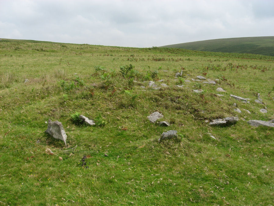 Drizzlecombe (W) Encircled Cairn
