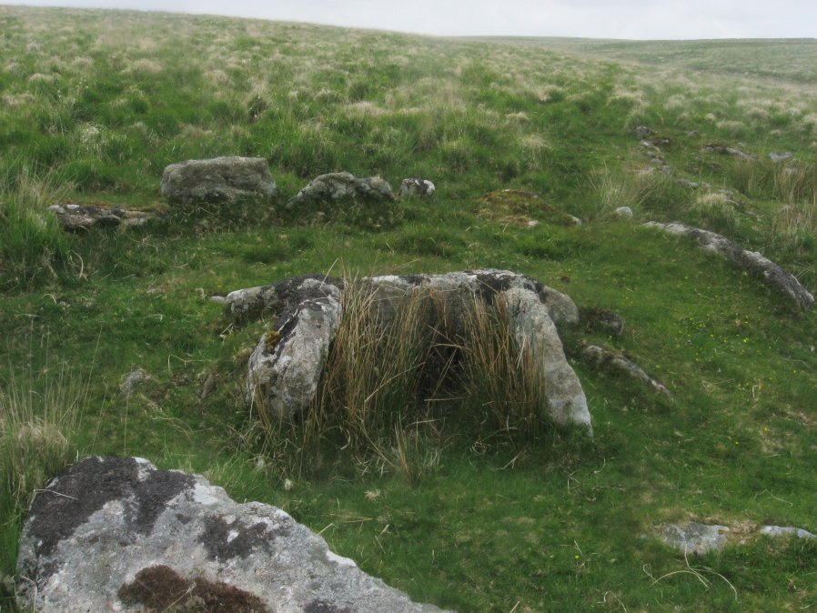 Deadman's Bottom, South Ring Setting Cairn and Cist