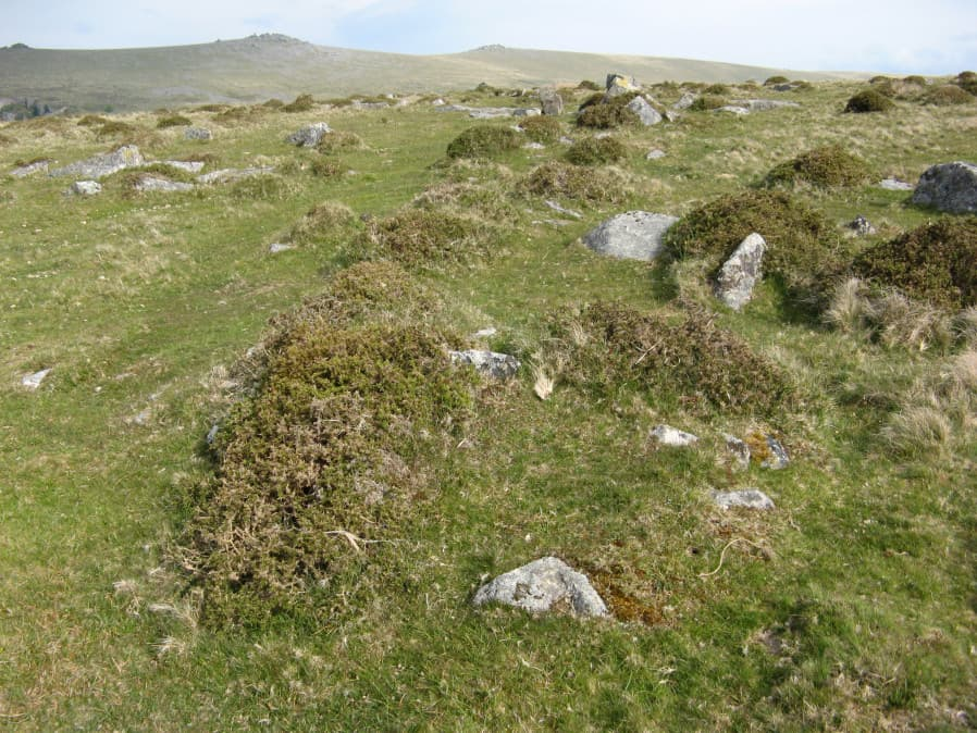 Merrivale reave cairns 15 Reported Cairn