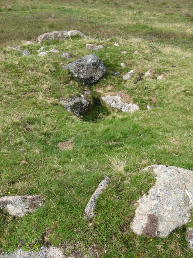 Royal Hill, Central Platform Cairn Circle and Cist