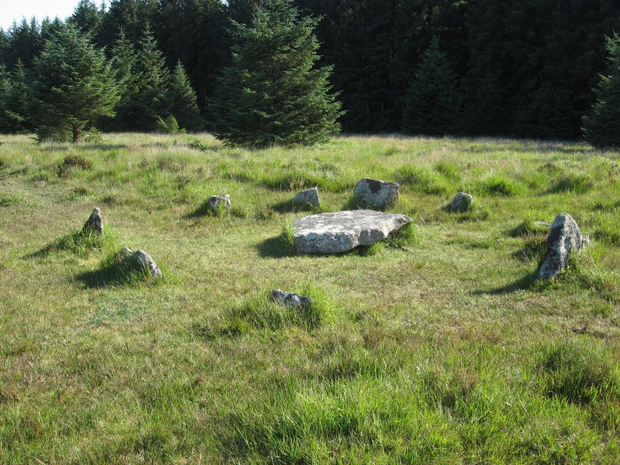 Lakehead Hill 6 (Newtake) Ring Setting Cairn and Cist