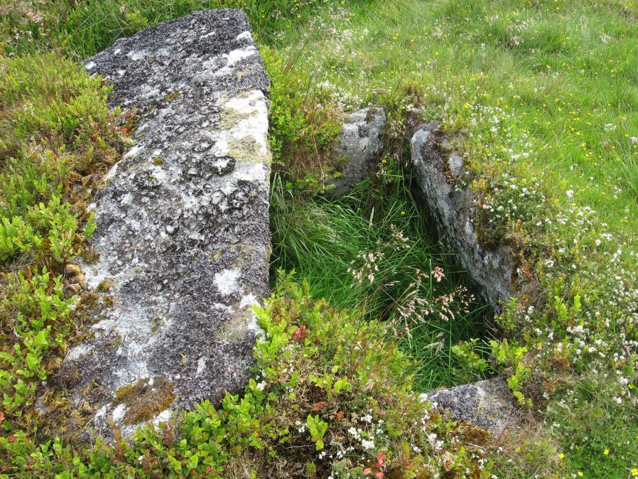 Stennen Hill No. 1 Platform Cairn Circle and Cist