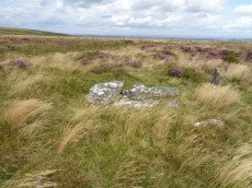 Grimslake Platform Cairn Circle and Cist